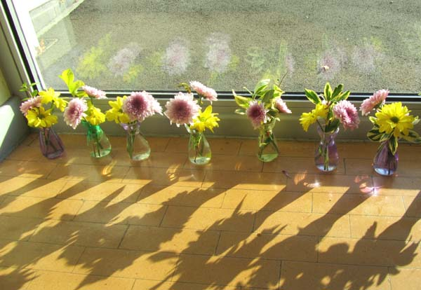 Small vases of flowers in front of a large sun-filled window