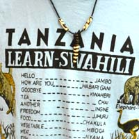 A walking Swahili lesson